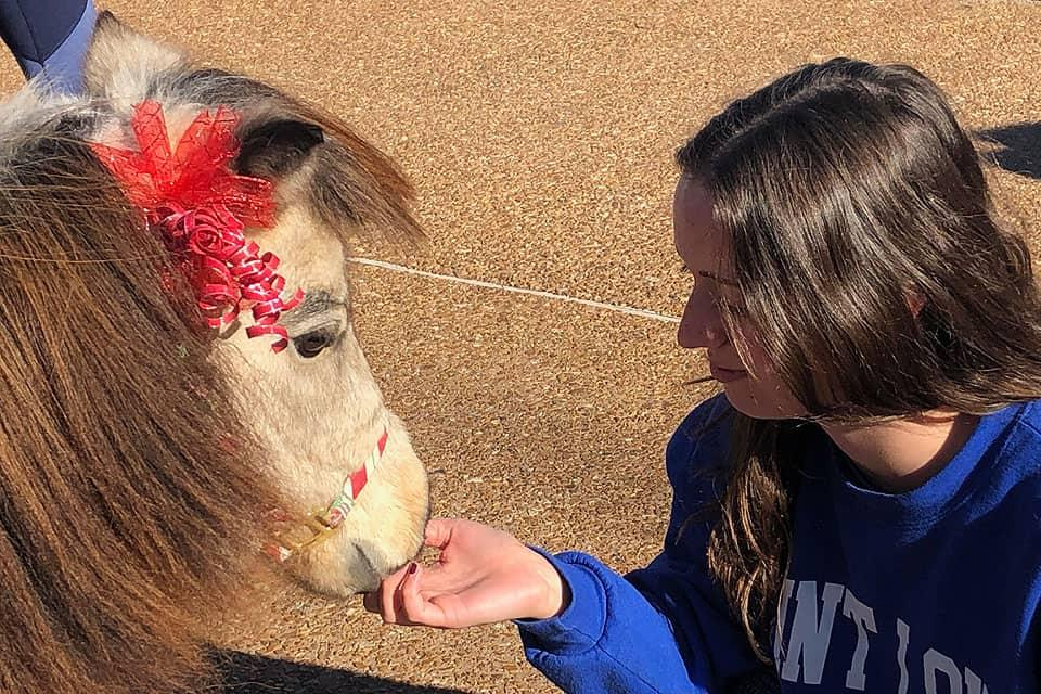 Winnie, a miniature therapy horse, shares the love with a SLU student.