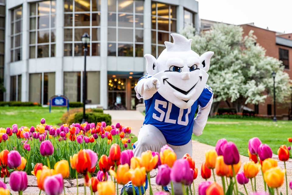 The Billiken is waiting to welcome new students with SLU's famous tulips.