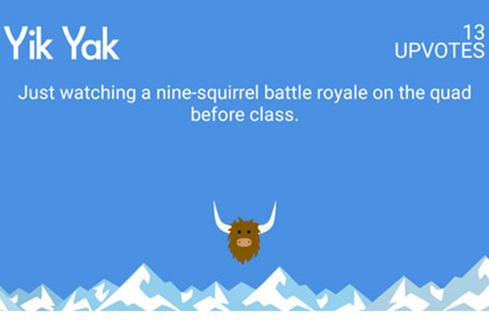 Squirrel yik yak 3