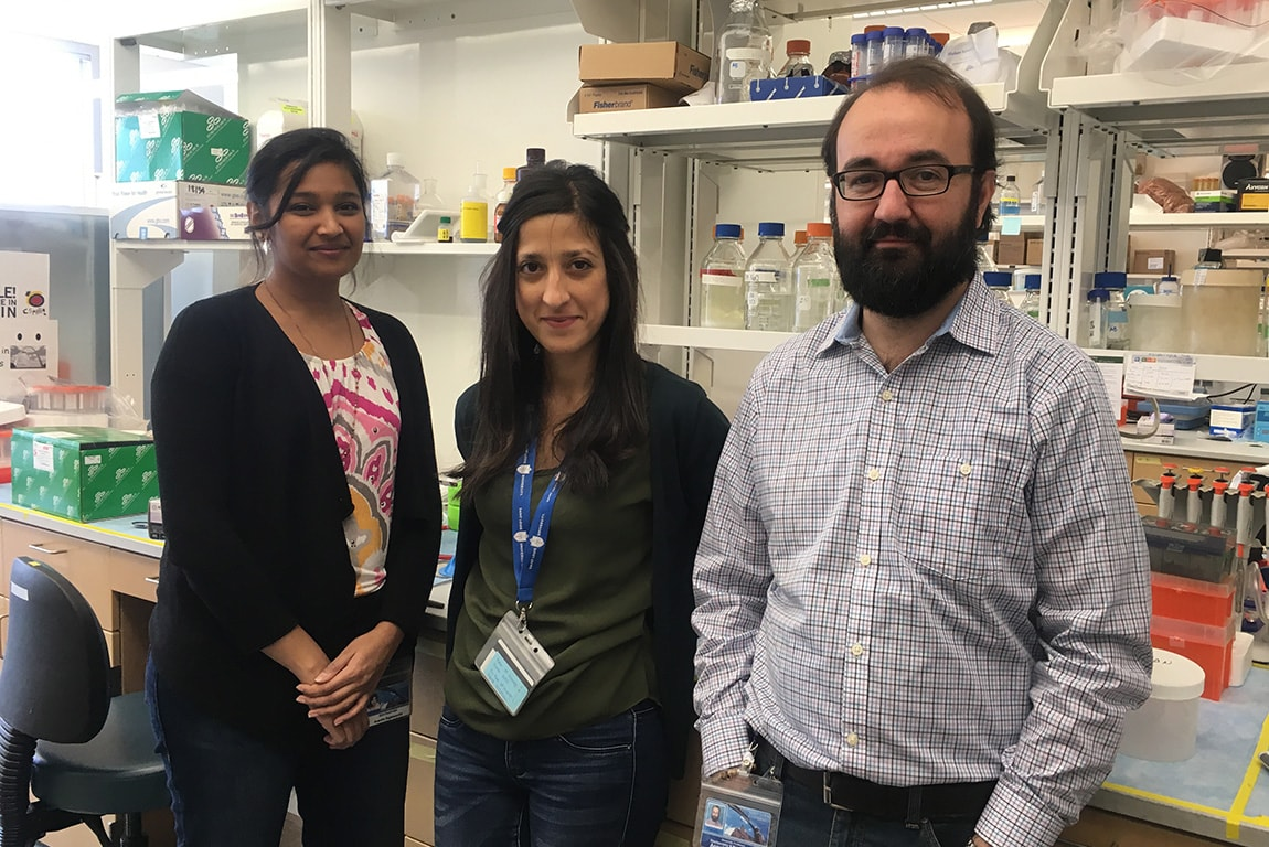 Ananthi Rajamoorthi, M.D./Ph.D. student, Noemí Arias, postdoc and Angel Baldan, Ph.D., associate professor of biochemistry and molecular biology