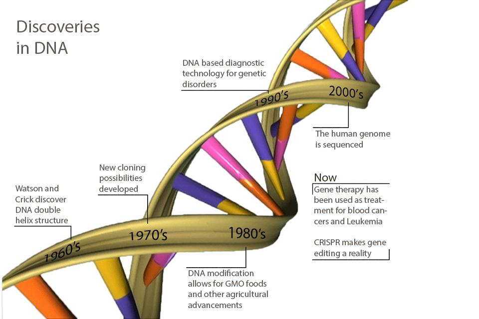 dna elektroforese essay Kapittel 12: fra dna til protein: fra genotype til fenotype 1  transkripsjon:  dna-dirigert rna-syntese 4  eksamensoppgaveforslag ia / ib vår  2009 essayoppgave: ali (3) har  metoder som bruker hybridisering,  elektroforese.
