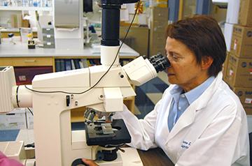 SLU researcher Sharon Frey looks into a microscope