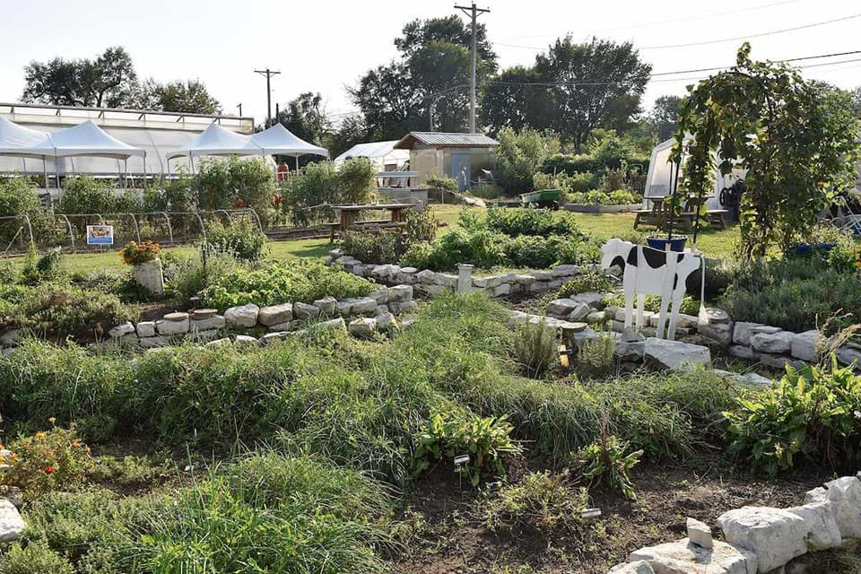 SLU Garden