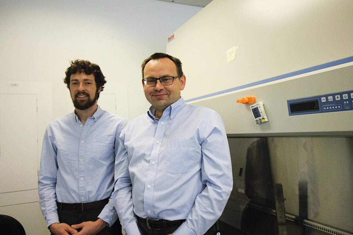 Andrew Jones, doctoral student, and Daniel Hawiger, M.D., Ph.D., associate professor of molecular microbiology and immunology at SLU