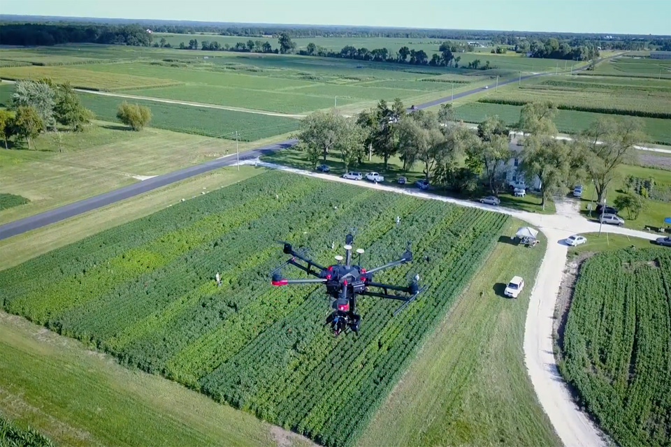Drone monitoring crops